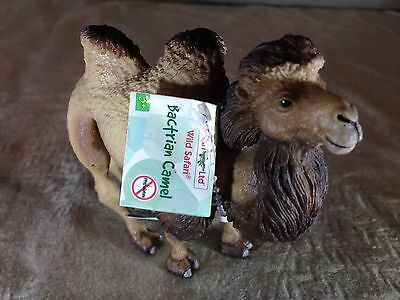 The BACTRIAN CAMEL! Safari Ltd 920929 with NEW Tag! Double-Hump VALUE!