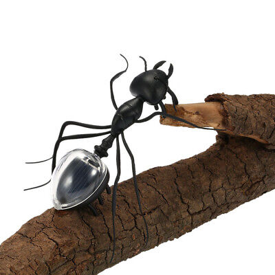 Black ABS Ant Insect Kids Educational Toy Magic Solar Powered Toy Kid Toy