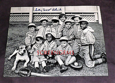 Sidney Kibrick Woim Our Gang Signed Photo Little Rascals Baseball