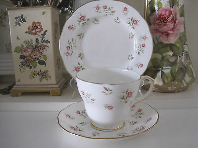 Pretty Vintage Duchess Marie Fine Bone China Trio