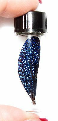 Real Blue Dragonfly Fairy Wing Preserved In Glass Vial