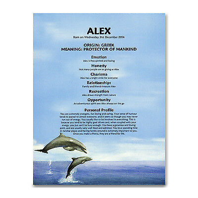 FIRST NAME MEANING PRINT Personalised Gift 13th 16th 18th 21st Birthday Dolphins
