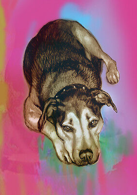 A4 size Custom Personalized Colour Pop Art Pet Portraits from your photo