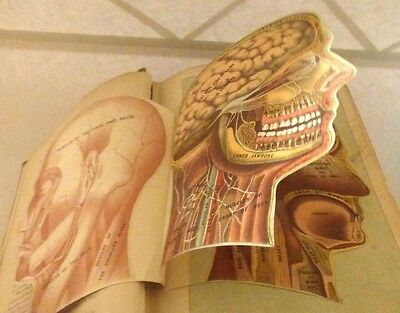 1901 Antique Medicology, or Home Encyclopedia of Health Book Illustrated