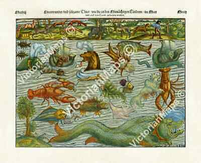 Sea & Land Monsters antique engraving chart map S Munster 1544 art print poster