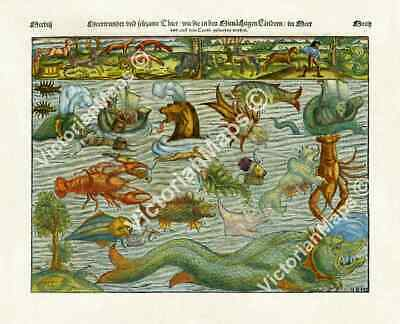 Sea & Land Monsters antique engraving print chart by S. Munster 1544 art poster