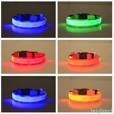 Colliers sécurité de nuit Fournitures Pet Cat Dog Glow LED Collar Light Nylon
