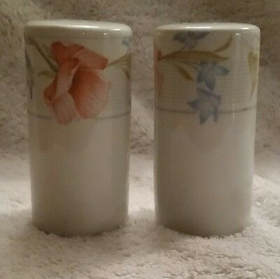 "American Limoges ""Flowers"" Salt & Pepper Set"