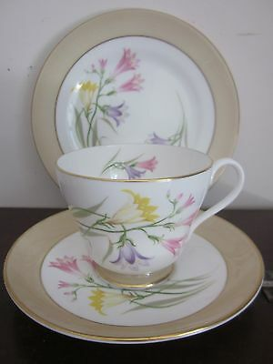 SHELLEY bone china FREESIA Tea TRIO - cup, saucer & side plate des.no 14166
