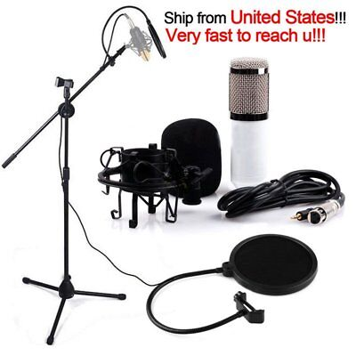 Professional Condenser Microphone Mic Studio Sound Recording w/Boom Stand Set EK