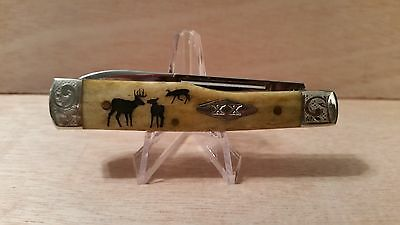"Case ""IN THE RUT"" Bone Gunstock Knife with Engraved  Bolsters  NR"