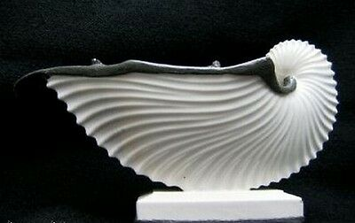 Nautilus Shell Antique French Ceramic Old Paris Inkwell