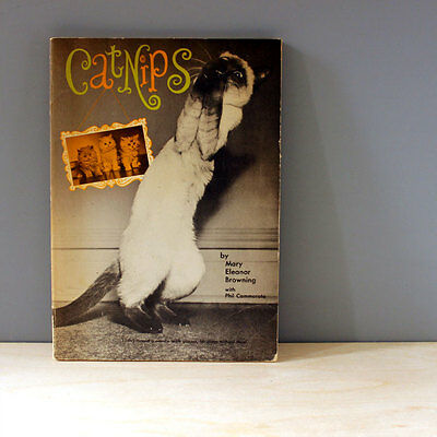 1960s Cat Humor Book Catnips Cute Mid Century Cats Midcentury Funny Paperback