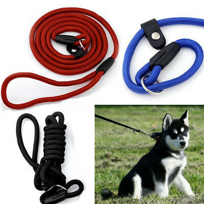 140CM Laisse Corde en Nylon Réglable Chien Chat Animaux Sangle Collier Promenade