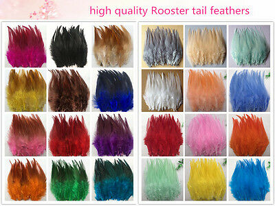 Beautiful 50/100pcs rooster tail feathers 10-15cm / 4-6inch DIY handicrafts