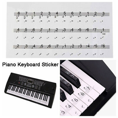 Reusable Piano Key Note 54/61/88 Keyboard Sticker Universal Clear Keyboard Decal