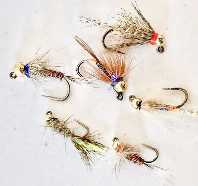 Tungsten Bead Head Jig Nymph Collection