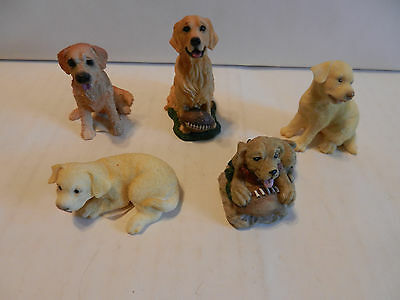 "Lot of 5 Collectible Golden Retriever Mini's 1 1/2"" - 2 1/2"" (F)"