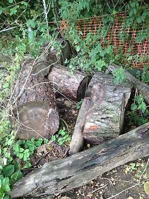 Joblot Of Good Sized Logs