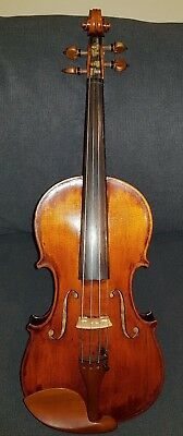 Full Size 4/4 Violin -  Labelled 'Carlo Lorenzini' Venetia 1916, no 25