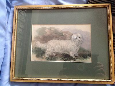 Painting of british dog skye terrier owned by james pratt 1874 piper