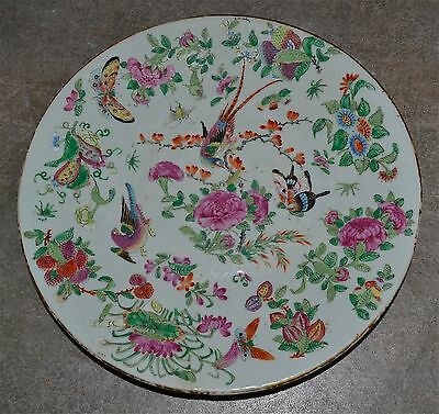 Antique Chinese Famille Rose Canton Platter Birds Insects Butterflies Fruit Qing