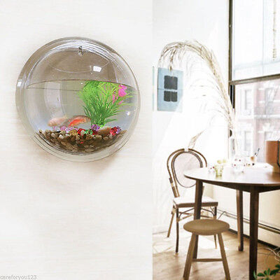 Aquarium Tank Beta Goldfish Hanger Plant Acrylic Wall Mount Hanging Fish Bowl++