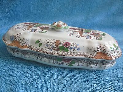 antique 1900s VICTORIAN EDWARDIAN porcelain LIDDED TOOTHBRUSH HOLDER rare