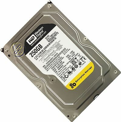 "Western Digital 250GB 7200RPM SATA II 3Gb/s 16MB Cache 3.5"" Hard Drive HDD"