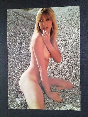 Cpm Pin'up 1978