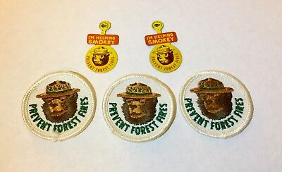 Vintage Smokey the Bear Patches and Pins - US Forestry Service Firefighting