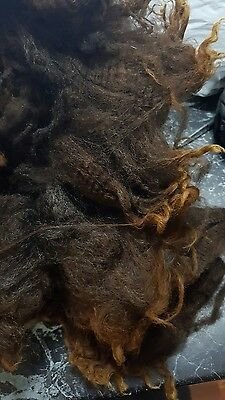965G Black Long Brown Tips  Perendale Wool Fleece  Spinning Carding Felt Crafts