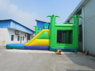 Jumping Castle With Slide And Pool