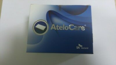 AteloCare: Membrane Tape25mm×75mm×1mm Absorbable Collagen Wound Dressing(5PCS)