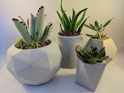 Geometric Concrete Succulent Planter Succulent Pot Flower Pot Concrete Planter