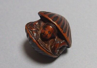 Japanese antique shunga netsuke Okame as Venus ,Edo period