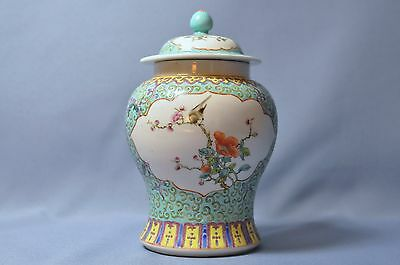 Fine Old Chinese hand painted porcelain flowers birds green ginger jar  DSC_0095