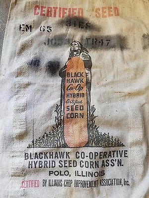Rare Blackhawk Hybrid Seed Corn Sack Bag Polo Il Farm Indian Ad Sign Cow Pig hen