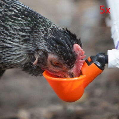 5 Pack Poultry Water Drinking Cups- Chicken Hen Quail Plastic Automatic Drinker