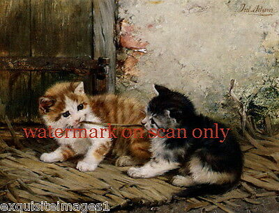 c1900 Adam~Tug of War with Straw~Cat~Cats~Kitty~Kittens~NEW Large Note Cards