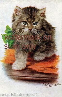 Vintage Art~Valter~Gray Kitten Kittens Cat Cats~Green Bow~ NEW Lge Note Cards