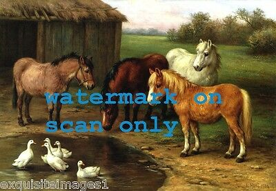 1934 Four Pony Ponies at Pond with White Ducks~E.Hunt~ NEW Large Note Cards