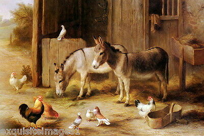 1915 E.Hunt~2 Burros~Donkey~Mules~Chickens~Pigeons~Farmyard~Barn~NEW Note Cards