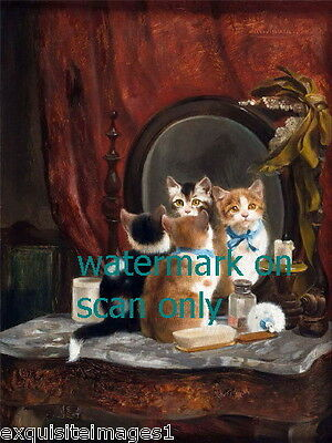 c1890 Cute Kitten Kittens Cat Cats Look in Mirror of Boudoir~ NEW Lge Note Cards