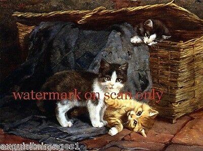 c1887~Playful Kitten~Cat~Cats~Kitty~Kittens in Basket~NEW Large Note Cards