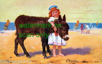 Vintage Art Cute Burro~Donkey & Barefoot Girl on Beach~Chums~NEW Lge Note Cards