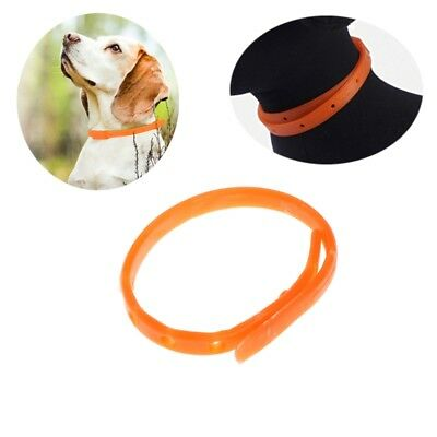 Pet Dog Cat Flea Tick Kill Remover Collar Protection Aroma Neck Ring Adjustable
