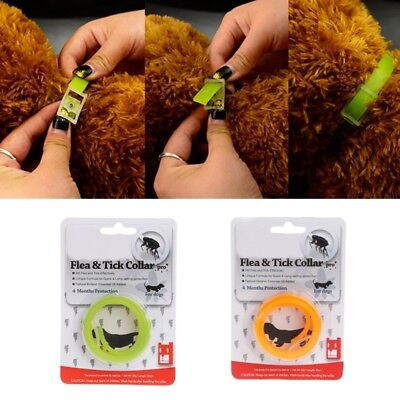Pet Dog Cat Collar Protection Neck Ring Flea Tick Mite Louse Remedy Remedies Hot
