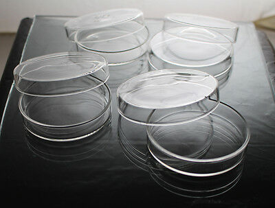 Qty 40 x Disposable Petri Dish Plastic 35mm, Made in Canada, laboratory use