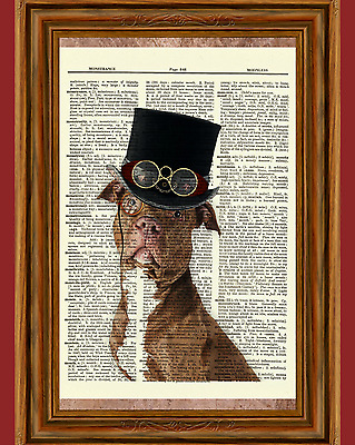 Steampunk Pit Bull Dictionary Art Print Poster Picture Dog Victorian Top Hat